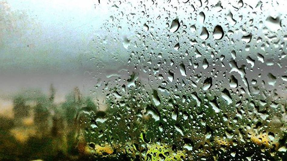 Throwback Thursday Earlydays Raindrops Window Hdr_pics Hdr_lovers Hdr_captures Nofilter Noedit Beautiful Spellbound Entranced Apictureisworthathousandwords Whenitrained Details Everydroptellsastory Amateurphotography Camerateur Indianclicks Indianstories Indianphotographersclub