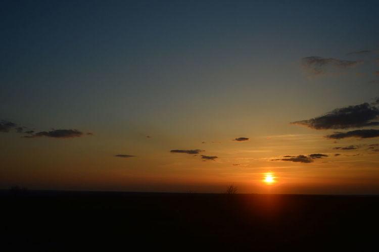 закат Summer Road Tripping Water Sea Sunset Beach Silhouette Moon Sun Palm Tree Reflection Sky