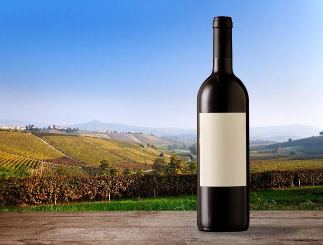 Wine bottle with blank label on vineyards Fall Colors Italian Landscapes Hills Agriculture Fall Autumn Vineyard Sunny Day Copyspace Blank Space Blank Label Bottle Sky Container Nature Refreshment Drink Landscape Food And Drink Day No People Wine Bottle Plant Alcohol Tranquil Scene Clear Sky Environment Agriculture Wine Tranquility