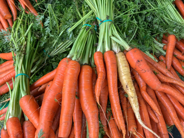 Abundance Bunch Carrot Day Farmer's Market Food Food And Drink Freshness Green Color Healthy Eating High Angle View Large Group Of Objects Market No People Orange Color Organic Raw Food Retail  Ripe Root Vegetable Vegetable Wellbeing