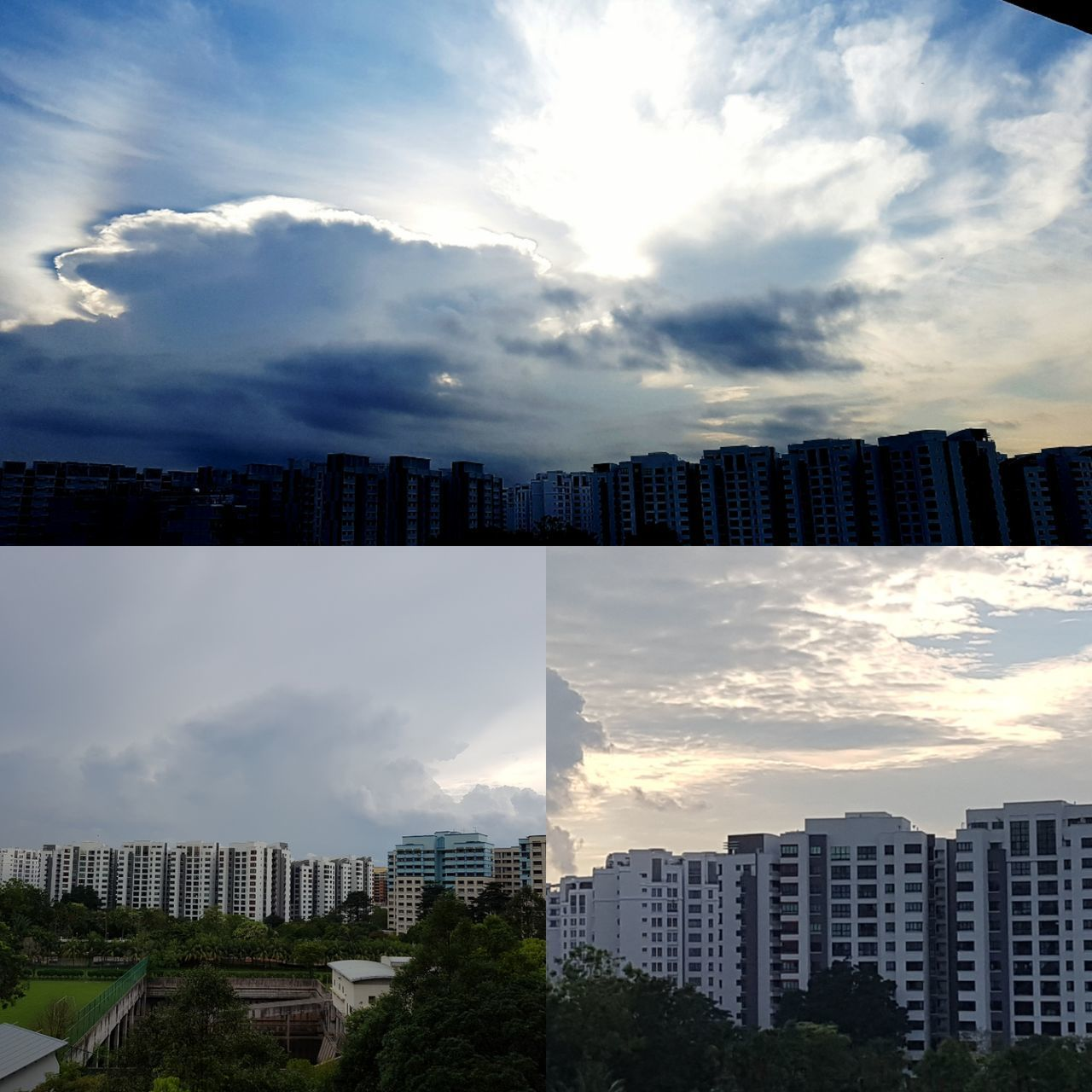 cloud - sky, building exterior, architecture, sky, built structure, cityscape, city, skyscraper, modern, no people, outdoors, day, growth, nature, tree, beauty in nature
