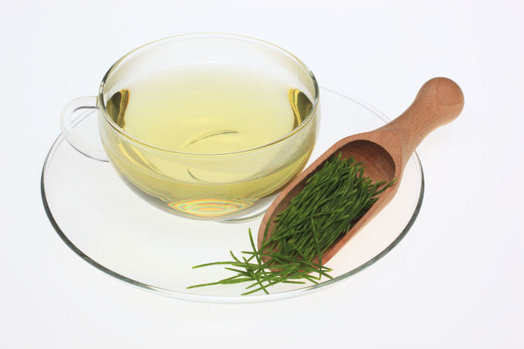 medicinal tea made of common horsetail, Equisetum arvense, field horsetail Equisetum Arvense Herb Horsetail Tea Close-up Common Horsetail Crockery Cut Out Food Food And Drink Freshness Glass Glass - Material Green Color Healthy Eating Herb Herbtea High Angle View Household Equipment Indoors  Kitchen Utensil Medicinal Plant Medicinal Tea No People Spoon Still Life Studio Shot Wellbeing White Background
