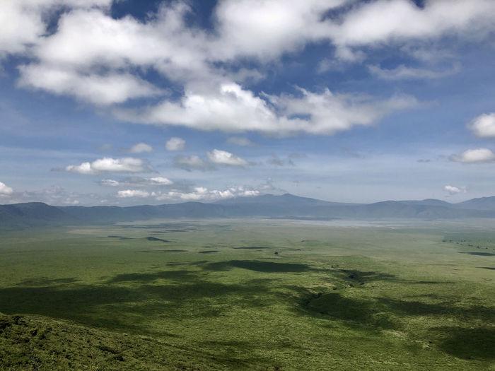 Ngorongoro in green