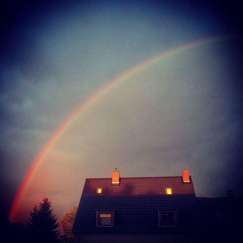 Rainbow Colorsplash