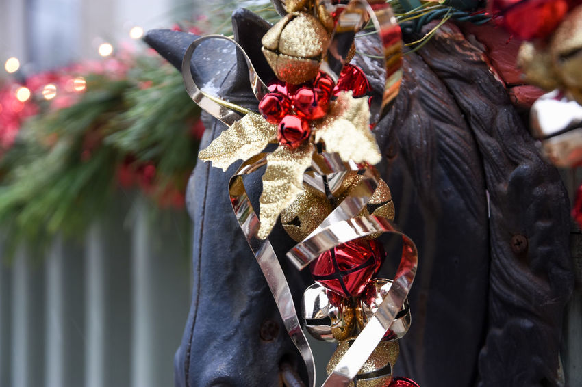 Horse Curls Bell Christmas Christmas Christmas Bell Christmas Decor Christmas Decoration Christmas Decorations City Close-up Day Garlinton Gold Green Color Hitching Post Horse Head Iron Iron - Metal No People Outdoors Red
