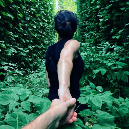 Rear View Of Woman Holding Hands And Walking Amidst Plants In Forest
