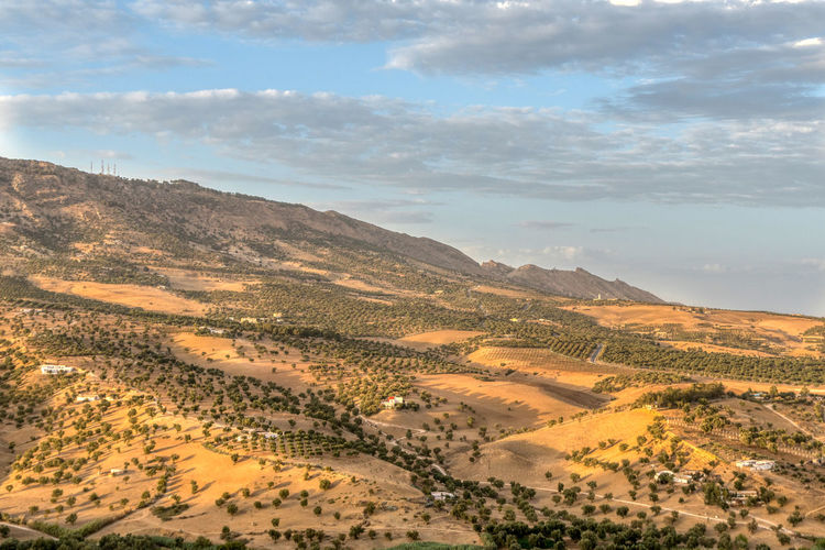 Overview of an arid land from the marinid tombs, fez, morocco.