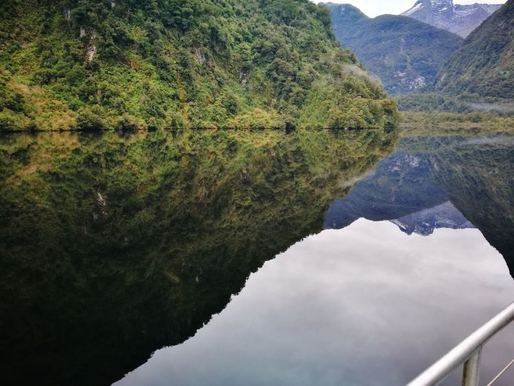 Doubtful Sound Reflection Water Mountain Outdoors Nature Beauty In Nature New Zealand Enjoy The Moment Outside Photography Love Life Outdoor Photography Playing Around With My Camera Thats Nature The Great Outdoors - 2017 EyeEm Awards Lost In The Landscape