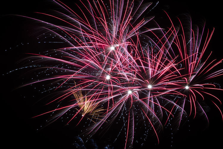 Illuminated Multi Colored Arts Culture And Entertainment Firework Display Celebration Firework - Man Made Object Long Exposure Event Motion Exploding Firework Light Lit Entertainment Sparks Urban Scene