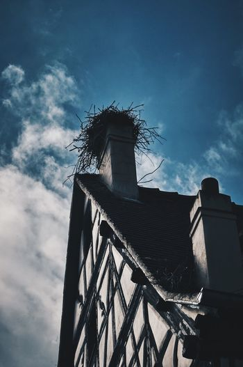 EyeEm Selects Low Angle View Architecture Built Structure Building Exterior Sky Cloud - Sky No People Day Outdoors Stork Nest Halftimbered House Alsatian Traditional Let's Go. Together. That time, no one home, on a fly lesson. Your Ticket To Europe
