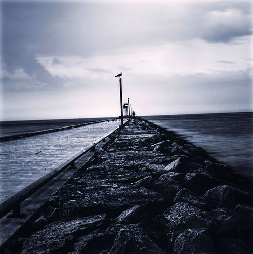 Cloudy day on The Pier ☁️ Long Exposure Cloud - Sky Lakeontario  Water B&W Photo Lifestyle Sky Seagull Lightpost Lighthouse