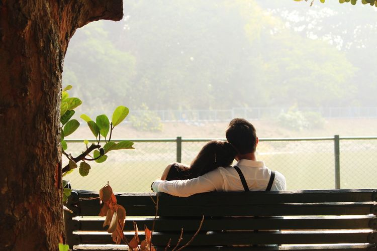 Rear View Of Couple Sitting On Bench In Park