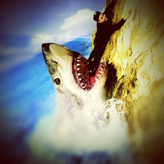 Help!!.. 3D 3Dpainting PavementArt Anamorphic Shark