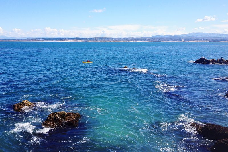 Monterey Bay Beauty Landscape Sea Nature Day Scenics Outdoors Water Tranquility Blue Wave