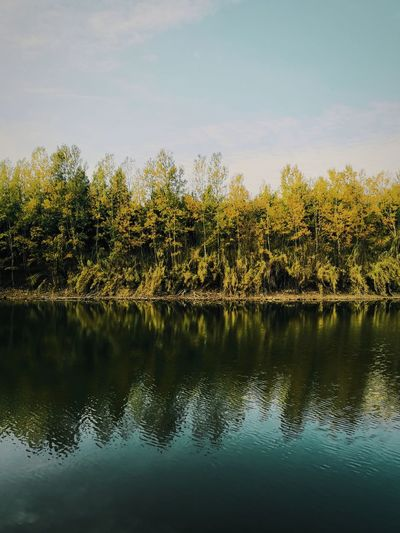 I see crealy now Mate20pro Huawei Unseengreece Lake Tree Water Sunset Reflection Lake Sky Tranquil Scene Calm Idyllic Lakeside Tranquility Plant Life Woods Countryside Shore