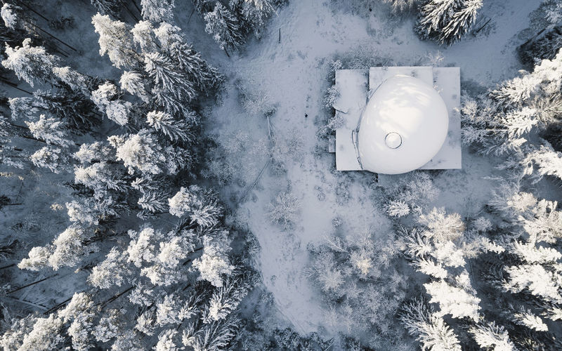 High angle view of snow on leaf during winter