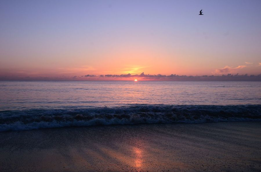 Stuart, Fl Stuart Beach Florida Sunrise Pink Sunrise Stuart Beach Sunrise Sunrise_sunsets_aroundworld Sunrise Sunrise_Collection
