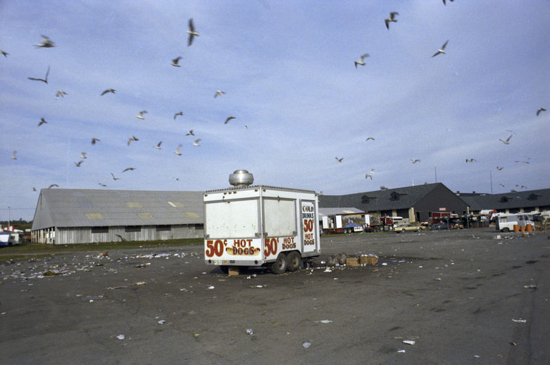 Abandoned Aftermath From Easter Day Fairgrounds Hot Dog Stand Litter No People Outdoors Seagulls In The City Sky Trailer