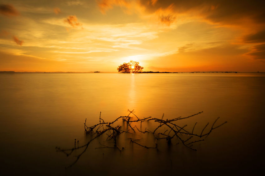 Bintan  Rays Of Light Bakau Beauty In Nature Bintan Island Cloud - Sky Lake Landscape Mangrove Nature No People Nyiksakamera Outdoors Reflection Scenics Silhouette Sky Sun Sunset Tanjung Uban Tranquil Scene Tranquility Tree Water