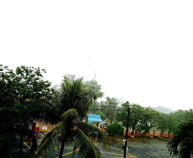 Heavy Rain Rain