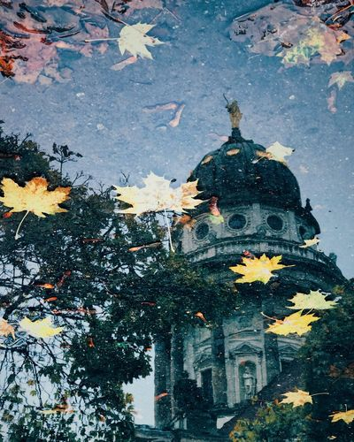 Reflection Of Historic Building On Puddle During Autumn