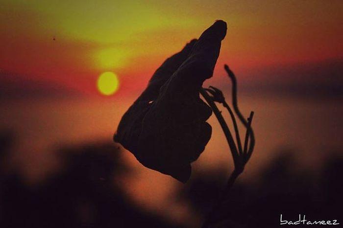 A call for a night fall 😍 Sundown Eventide Nightfall Naturebeauty Sensational😊 Itsphotosensation😎