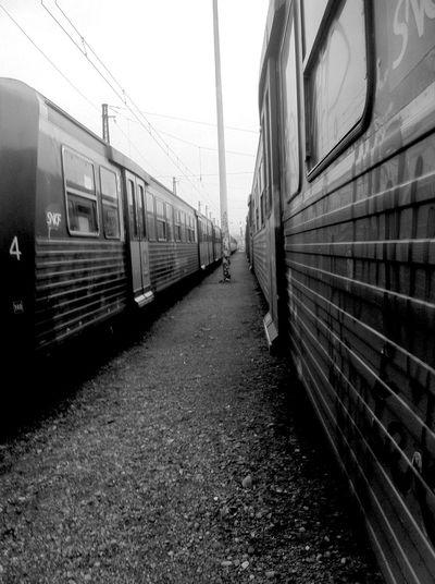 Graffiti Train Yard Day Action