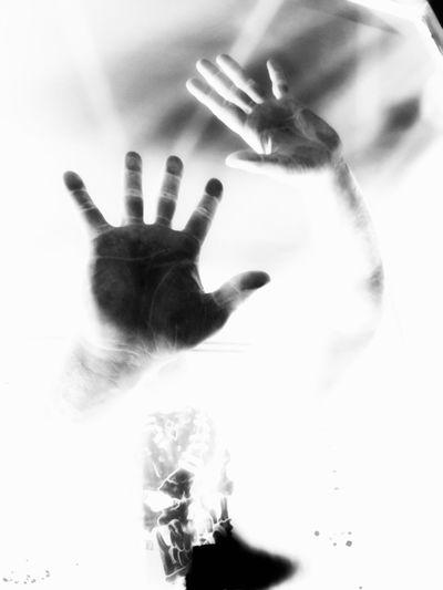 Human Hand Palm