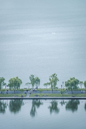 烟柳孤山侧,云水断桥西,谁家一翎玉羽,飘飘飞过白堤。 morning lake Bird Hangzhou,China Lake Look Down Morning The West Lake Water