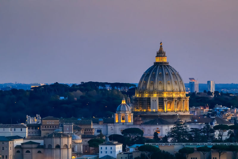 The skyline of the city of rome with st. peter's basilica, panoramic view among the pine trees.