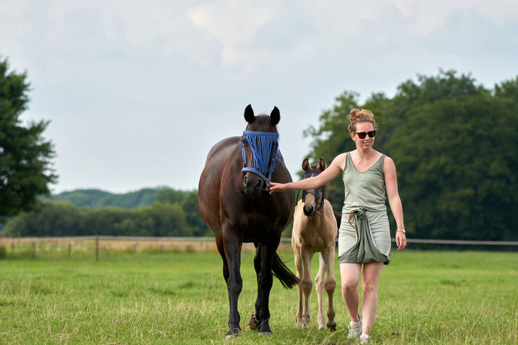 Smiling woman walking on field with horses against sky