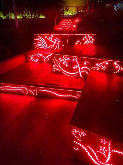 High angle view of illuminated christmas lights
