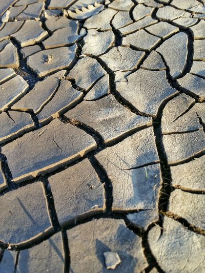 Pattern Pieces Dryness Dried Out EyeEm Germany No People Nature Nature Photography Natural Pattern Pattern