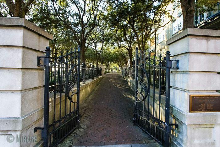 Enter Park Downtown Charleston  Eye4photography