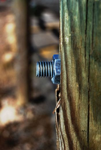 Bolt And Nut In Wood