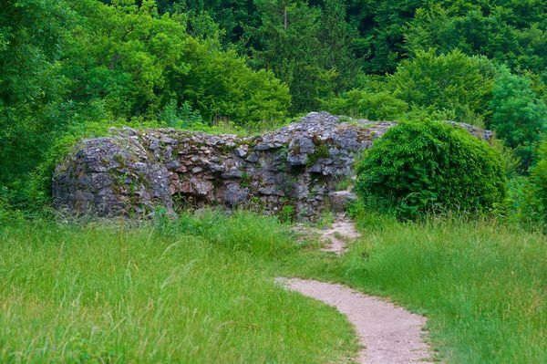 Taken on the old castle Neideck, Franconian Switzerland Atmosphere Castle Castle Ruin Day Grass Green Color Landscape Mystical Place Nature Neideck No People Outdoors Tree