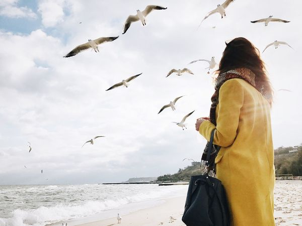 Bird Flying Animal Wildlife Sea Sky Water Vscocam Girl Odessa Vscouk Vscoodessa Vscoukraine VSCO Odessa,Ukraine Lifestyles Long Hair Odessagram October Beach Day Seainsidee