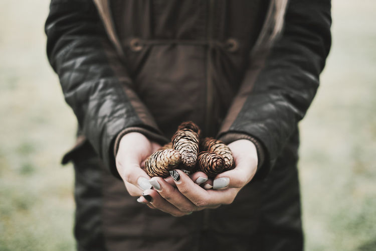 Midsection of woman holding pine cones while standing outdoors