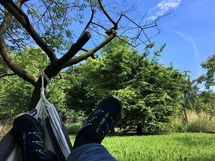 relax in the garden.... Breathing Space Holiday Peace And Quiet Amaca Beauty In Nature Garden Grass Green Color Human Leg Lants Legs Nature One Man Only Outdoors Personal Perspective Shoe Sky Tree