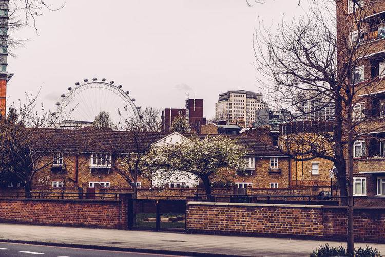 Adventures In The City London London Eye Architecture Bare Tree Building Building Exterior Built Structure City Day No People Sky Travel Destinations