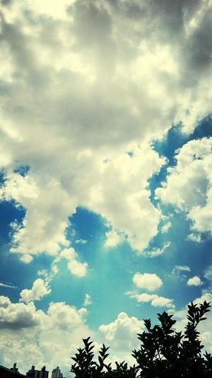 Facça sol ou chuva um lindo dia vai nascer.