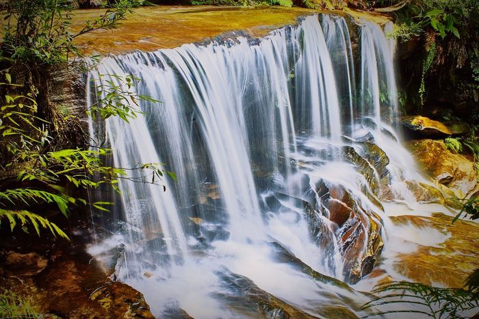 43 Golden Moments Waterfalls Gold Somersby Falls Nsw Nature Photography Nature Flowing Water