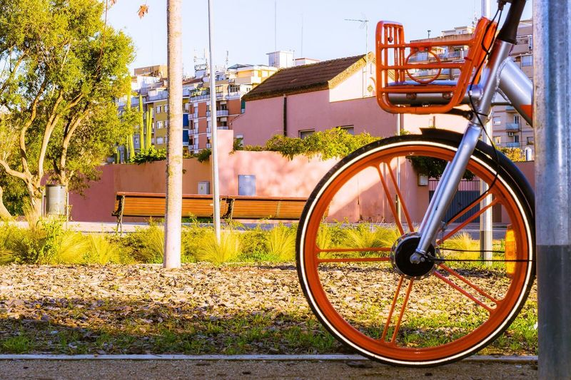Nature No People Day Outdoors Sunlight Sun Transportation Architecture Built Structure Mode Of Transportation Building Exterior City Land Vehicle Bicycle Focus On Foreground Metal Plant Wheel Sky Stationary Tree Orange Color