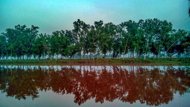 While in pakistan Itsgreenitspakistan Trees Canalview Canal Daska Pakistan PhonePhotography Sony XPERIA Sony Xperia Showcase: January Showcase : January Showcase:January Reflection