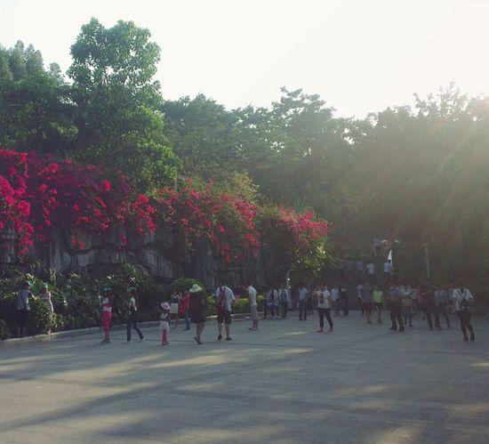 夕阳无限好,爬山。 The Week On EyeEm City Landscape My City Popular Photos Walking On Sunshine Flowers, Nature And Beauty The Traveler - 2015 EyeEm Awards