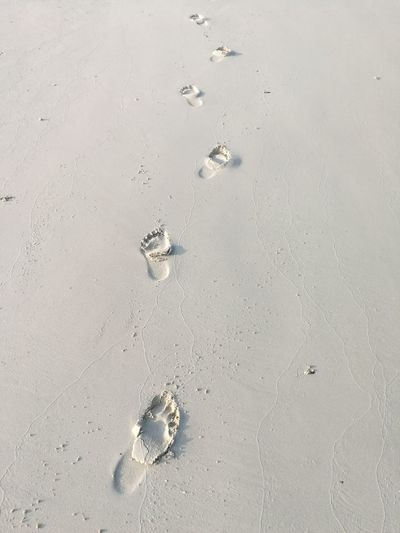 High angle view of footprints on wet sand