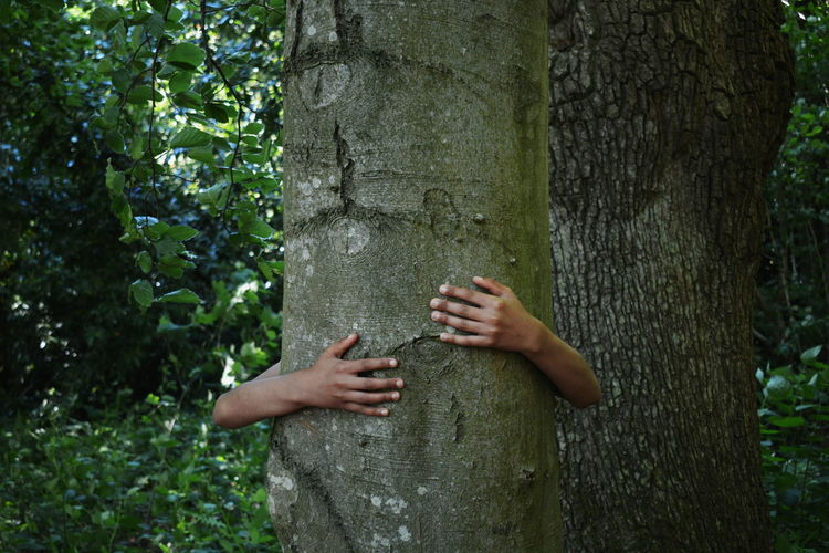 Man embracing tree trunk in forest