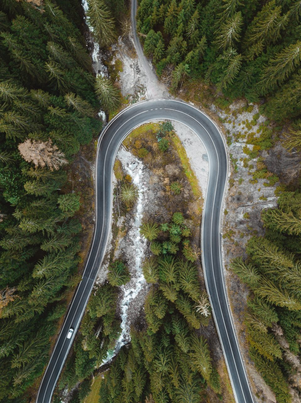 transportation, road, plant, tree, high angle view, curve, no people, scenics - nature, nature, mountain road, aerial view, mountain, mode of transportation, beauty in nature, non-urban scene, tranquility, motor vehicle, day, winding road, car, outdoors, above, multiple lane highway