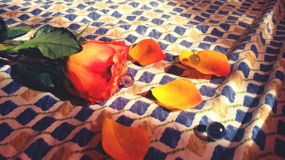 Rosé Birthday Roses The Queenofflowers Orange Roses Check This Out Taking Photos Enjoying Life