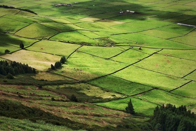 Terceira Azores manta de retales
